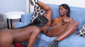 مشاهدة اثنين من مثليات سوداء تلعب جنسيا