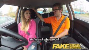 توافق الفتيات الجميلات على ممارسة الجنس في السيارة
